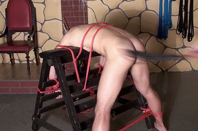Slave Boy Training download